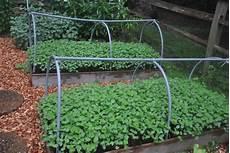 your garden cover crops for your garden hgtv