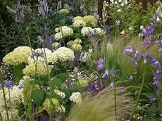 was passt zu hortensien hortensien die gro 223 e vielfalt hortensien vielfalt und