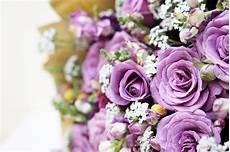 beau bouquet de fleurs pas cher 233 closion