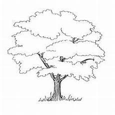 die 14 besten bilder baum zeichnung baum zeichnung