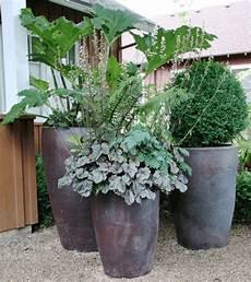 Pflanzkübel Modern Bepflanzen - gro 223 e pflanzk 252 bel lassen den garten gro 223 artig erscheinen