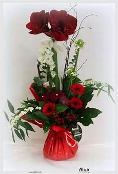 Fleur De Noel Les Bouquets De Fin D 233 E Aloe Fleurs