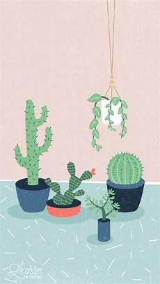 cactus flower iphone wallpaper succulent wallpapers 51 images
