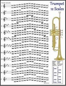 what are the 12 major scales of a trumpet quora