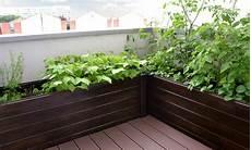 jardin potager sur terrasse concevoir un calendrier du potager pour un suivi des