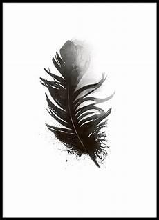 feder schwarz weiß vorlage poster mit schwarzer feder aquarellzeichnung in 2019