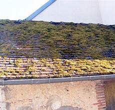 mousse sur le toit entretien sp 233 cifique d 233 moussage de toiture