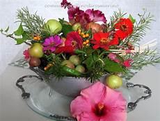 fiore compleanno come un fiorellino di rosmarino buon compleanno