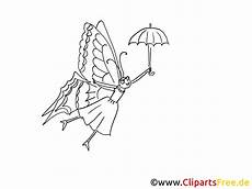 Insekten Ausmalbilder Gratis Motte Malvorlage
