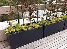 bac pour arbuste de jardin bac 224 plantes ext 233 rieur l atelier des fleurs