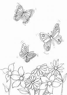 Ausmalbild Schmetterling Zum Ausdrucken Ausmalbilder Schmetterling 17 Ausmalbilder Malvorlagen
