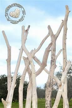 branche de bois flotté branches de bois flott 233 des branches de bois flott 233 de