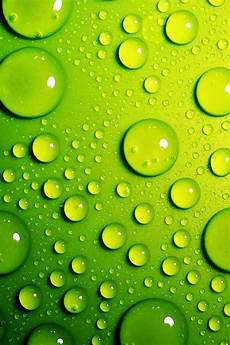 lime green iphone background lime green bubbles iphone 4 wallpaper pocket walls