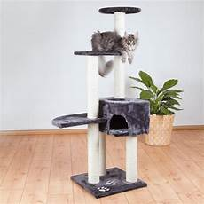 shop trixie alicante cat tree free shipping today