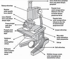 Pengertian Mikroskop Bagian Bagian Mikroskop Mikroskop