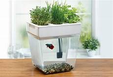 potager appartement aquaponics at home a modern farmer review of turnkey