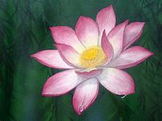 fiore di loto significato giapponese water paintings and photos tracts4free