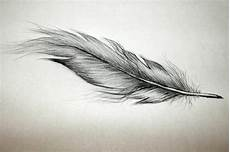 40 Impressive Feather Tattoos Ideas For And