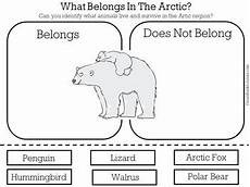arctic animals worksheets for preschool 14127 arctic animals worksheet activity by green apple lessons tpt