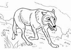 ausmalbilder f 252 r kinder wolf 2