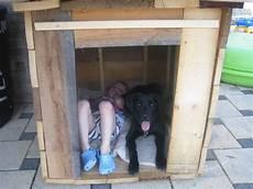 comment fabriquer une re pour chien barri 232 re pour niche de mon chien