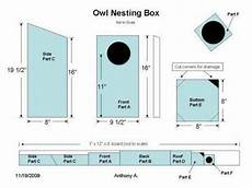 screech owl house plans screech owl house plans how to build a screech owl box