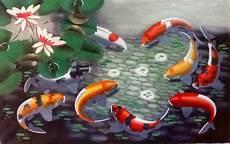 57 Gambar Ikan Koi Pembawa Hoki Yang Lagi Trend
