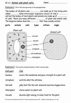 worksheets for ks3 18569 iman s home school key stage 3 science revision worksheets years 7 9