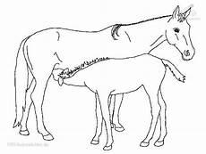 Einfache Malvorlage Pferd Bewertung Malvorlage 1 2 3 4 5 Beschreibung Malvorlage