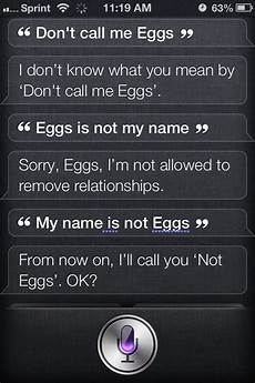 Lustige Fragen An Siri - 30 really siri responses to questions quertime