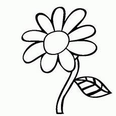 Gambar Bunga Kartun Hitam Putih Untuk Mewarna Aneka