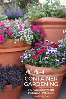 all about container gardening the steps to grow
