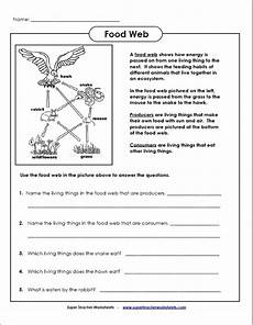 science worksheets websites 12458 food web to go with http www ducksters science ecosystems food chain and web php food