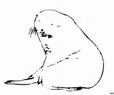 Malvorlagen Jahreszeiten Kostenlos Nd Seerobbe Liegend Ausmalbild Malvorlage Tiere