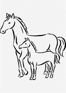 Ausmalbild Pferde Fohlen Kostenlose Malvorlagen Und Elsa Kostenlose
