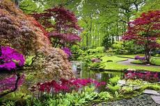 Jardin Japonais 2 Jardinerie Toulousaine