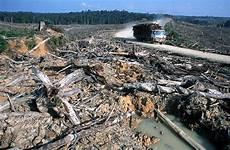 zerstörte natur vorher nachher ein erster erfolg f 252 rs klima wirtschaft badische zeitung