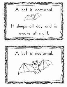 nocturnal animals worksheets 13983 nocturnal animal book and worksheet differentiated tpt