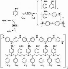 polymers free full text enzyme initiated radical polymerizations html