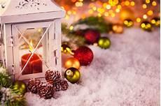 weihnachtszeit gartenbau bongartz
