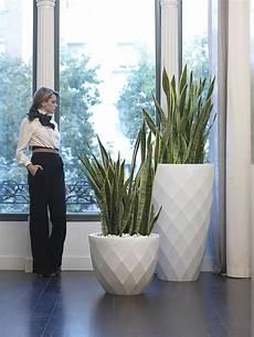 Vondom Pflanzgef 228 223 Vases Rund D66cm Kaufen Im Borono