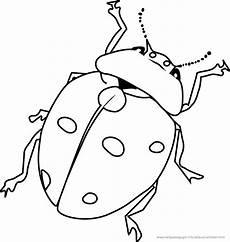 Insekten Ausmalbilder Kostenlos Malvorlage Lustige K 228 Fer Ausmalbilder