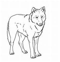 Malvorlagen Wolf Of Wall Ausmalbild Hirsch Coloring 3 Hirsche