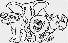 animal kingdom worksheet for grade 1 14255 grade 5 stories with comprehension questions in the sun coloring pages coloring