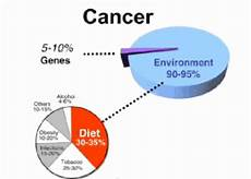 cancers are primarily an environmental disease