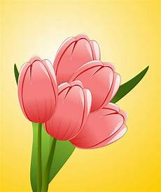 15 Gambar Bunga Tulip Indah Servergambar01