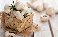Chignon Aufstrich Pilze Knoblauch Pilze Aufstrich