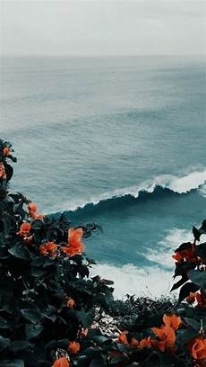 wallpaper iphone aesthetic nature fovorite wallpaper iphonewallpaper food nature