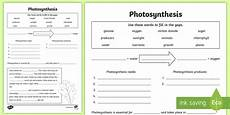 plants and photosynthesis worksheets 13616 photosynthesis worksheet photosynthesis plants growth