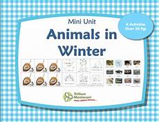 animals in winter worksheets for kindergarten 14199 ebook bundle sale